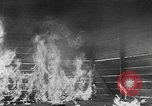 Image of Comparison of conventional bombs with incendiaries Florida United States USA, 1945, second 55 stock footage video 65675051710