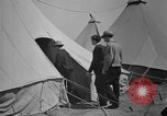 Image of CCC recruits United States USA, 1935, second 57 stock footage video 65675051741