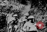 Image of General MacArthur Papua New Guinea, 1942, second 36 stock footage video 65675051761