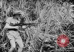 Image of General MacArthur Papua New Guinea, 1942, second 46 stock footage video 65675051761