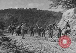 Image of WPA Conservation projects in West Virginia West Virginia USA, 1937, second 3 stock footage video 65675051767