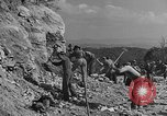Image of WPA Conservation projects in West Virginia West Virginia USA, 1937, second 4 stock footage video 65675051767