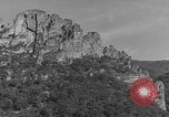 Image of WPA Conservation projects in West Virginia West Virginia USA, 1937, second 55 stock footage video 65675051767