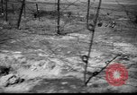 Image of German officers Russia, 1948, second 23 stock footage video 65675051802