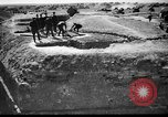 Image of German officers Russia, 1948, second 51 stock footage video 65675051802