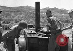 Image of United States soldiers Sicily Italy, 1943, second 37 stock footage video 65675051857