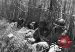 Image of United States soldiers Sicily Italy, 1943, second 52 stock footage video 65675051857