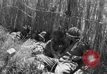 Image of United States soldiers Sicily Italy, 1943, second 54 stock footage video 65675051857