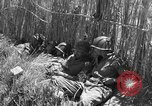 Image of United States soldiers Sicily Italy, 1943, second 57 stock footage video 65675051857