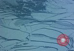 Image of snow covered area Korea, 1951, second 53 stock footage video 65675051941