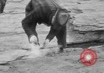 Image of engineers Egypt, 1930, second 35 stock footage video 65675052010