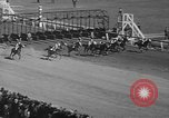 Image of large crowd Jamaica New York USA, 1937, second 32 stock footage video 65675052027