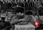 Image of L-5 Piper Cub plane Palawan Philippines, 1945, second 5 stock footage video 65675052255