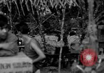 Image of L-5 Piper Cub plane Palawan Philippines, 1945, second 7 stock footage video 65675052255