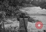 Image of L-5 Piper Cub plane Palawan Philippines, 1945, second 22 stock footage video 65675052255