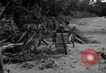 Image of L-5 Piper Cub plane Palawan Philippines, 1945, second 49 stock footage video 65675052255