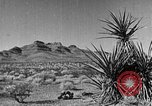 Image of Black Canyon Boulder City Nevada USA, 1936, second 53 stock footage video 65675052280