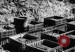 Image of Hoover Dam Nevada United States USA, 1936, second 49 stock footage video 65675052283