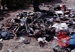 Image of dead bodies of Vietcong Vietnam, 1968, second 17 stock footage video 65675052308