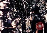 Image of United States 25th Infantry Division Vietnam, 1967, second 23 stock footage video 65675052325