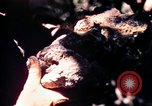 Image of United States 25th Infantry Division Vietnam, 1967, second 29 stock footage video 65675052325
