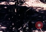 Image of United States 25th Infantry Division Vietnam, 1967, second 39 stock footage video 65675052325