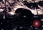 Image of United States 25th Infantry Division Vietnam, 1967, second 42 stock footage video 65675052325