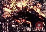 Image of United States 25th Infantry Division Vietnam, 1967, second 45 stock footage video 65675052325