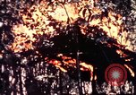 Image of United States 25th Infantry Division Vietnam, 1967, second 46 stock footage video 65675052325