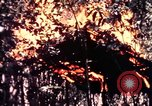 Image of United States 25th Infantry Division Vietnam, 1967, second 47 stock footage video 65675052325