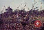Image of 25th Infantry Division troops Vietnam, 1967, second 13 stock footage video 65675052329
