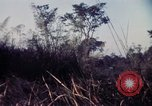 Image of 25th Infantry Division troops Vietnam, 1967, second 35 stock footage video 65675052329