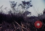 Image of 25th Infantry Division troops Vietnam, 1967, second 36 stock footage video 65675052329