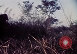 Image of 25th Infantry Division troops Vietnam, 1967, second 41 stock footage video 65675052329