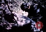 Image of 25th Infantry Division troops Vietnam, 1967, second 10 stock footage video 65675052331