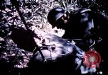 Image of 25th Infantry Division troops Vietnam, 1967, second 11 stock footage video 65675052331