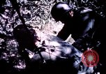 Image of 25th Infantry Division troops Vietnam, 1967, second 12 stock footage video 65675052331
