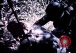 Image of 25th Infantry Division troops Vietnam, 1967, second 15 stock footage video 65675052331