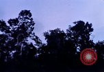 Image of 25th Infantry Division troops Vietnam, 1967, second 19 stock footage video 65675052331