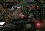 Image of US Marines in Battle of Hue Hue Vietnam, 1968, second 28 stock footage video 65675052333