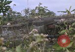 Image of H Company 2nd Battalion 5th Marines 1st Division Hue Vietnam, 1968, second 19 stock footage video 65675052402