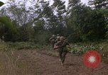 Image of H Company 2nd Battalion 5th Marines 1st Division Hue Vietnam, 1968, second 59 stock footage video 65675052402