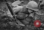 Image of Japanese-American 442nd Infantry Vosges Mountains France, 1944, second 7 stock footage video 65675052439