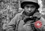 Image of Japanese-American 442nd Infantry Vosges Mountains France, 1944, second 9 stock footage video 65675052439
