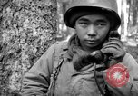 Image of Japanese-American 442nd Infantry Vosges Mountains France, 1944, second 10 stock footage video 65675052439