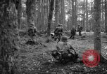 Image of Japanese-American 442nd Infantry Vosges Mountains France, 1944, second 14 stock footage video 65675052439