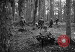Image of Japanese-American 442nd Infantry Vosges Mountains France, 1944, second 15 stock footage video 65675052439