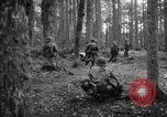 Image of Japanese-American 442nd Infantry Vosges Mountains France, 1944, second 16 stock footage video 65675052439