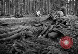 Image of Japanese-American 442nd Infantry Vosges Mountains France, 1944, second 17 stock footage video 65675052439