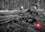 Image of Japanese-American 442nd Infantry Vosges Mountains France, 1944, second 18 stock footage video 65675052439